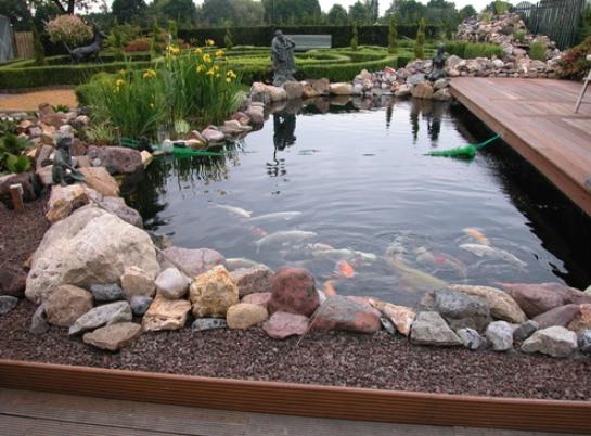 Пруд для рыбы на дачном участке