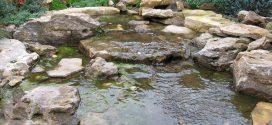 Особенности создания искусственных водоёмов