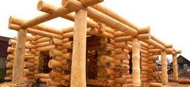 Строим дом из дерева: достоинства и недостатки